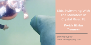 swimming with manatees in Crystal river, Florida , hidden treasures Florida, places to visit in Florida, responsible travel covid, Florida with kids, kid friendly Florida destinations