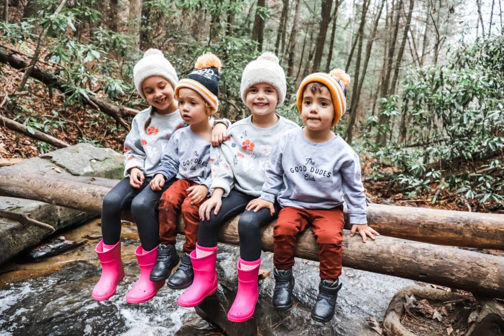 kid friendly activities in blue ridge Georgia, things to do with kids in blue ridge Georgia
